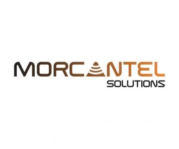 Morcantel Solutions